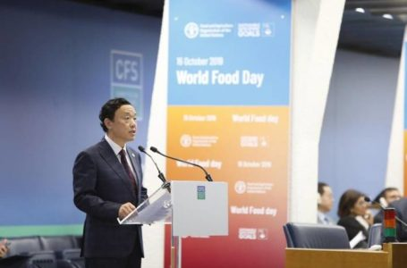 Committee on World Food Security kicks off 46th session