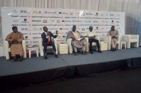 3rd Daily Trust Agric Confab: NABG asks Nigeria to bring knowledge, innovation into rice value chain