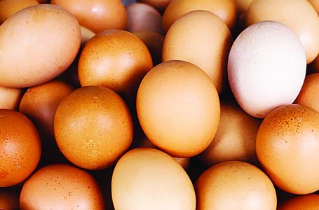 Why protein deficiency is a national emergency, by stakeholders