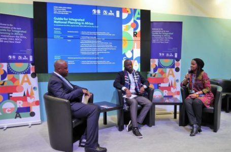 COP25: UNDP, AfDB, AUDA unveil Guide for Integrated Planning