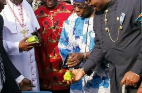 Food sufficiency Initiative: Obasanjo lauds Akwa Ibom, urges other governors to emulate Emmanuel