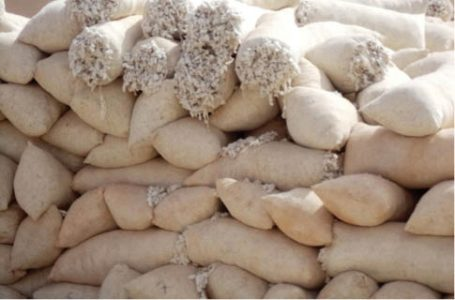 Shaky agreement threatens CBN's loan recovery from cotton farmers