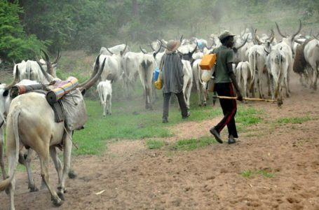 """""""Peaceful Coexistence, Key to Food Security"""", Taraba Ministry of Agric Entreats Farmers, Herders"""