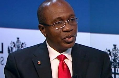 CBN seeks partnership with FCDA, states for dairy production