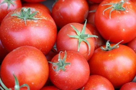 700,000 metric tonnes of tomatoes required to meet national demand ―NIHORT